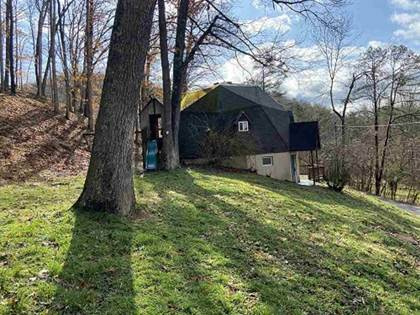 Residential for sale in 304 Wampler Branch, Greenup, KY, 41144