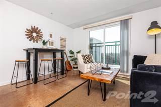 Apartment for rent in Windsor Park Lofts - 2 Bedroom (D2), Edmonton, Alberta