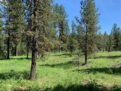 Lots And Land for sale in Lot # 39 White Tail Court, New Meadows, ID, 83654