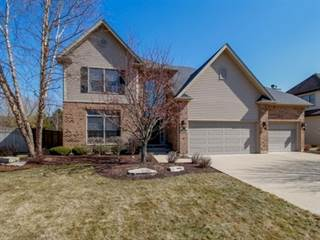 Single Family for sale in 12617 Coreopsis Court, Plainfield, IL, 60585