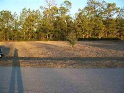 Lots And Land for sale in Lot 10 Twin Oaks, Bristol, FL, 32321