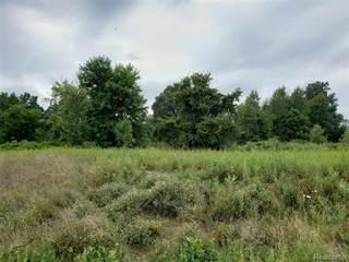 Land for sale in Par 11 MAPLEFIELD, Byron, MI, 48418