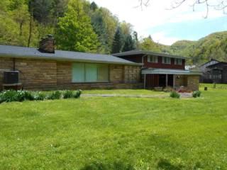 Single Family for sale in 2468 Slate creek rd, Grundy, VA, 24614