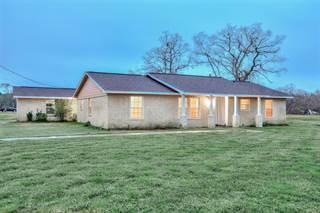 Single Family for sale in 19104 County Road 520b, Brazoria, TX, 77422