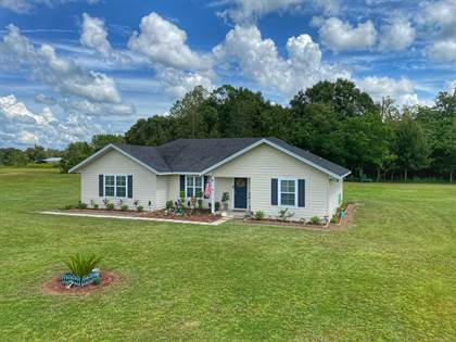 Residential Property for sale in 9930 13th Ct, Trenton, FL, 32693