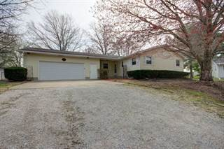 Single Family for sale in 412 South White Street, Sidney, IL, 61877