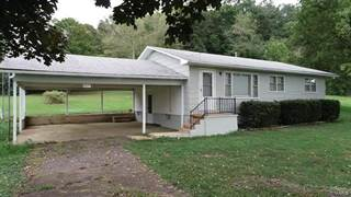 Single Family for sale in 405 South Whitener Street, Marquand, MO, 63655