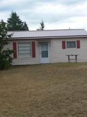 Single Family for sale in 3330 Koski Rd, Moran, MI, 49760