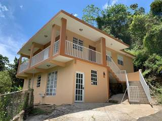 Single Family for sale in 0 SR 110 BARRIO SALTO ABAJO, Utuado, PR, 00641