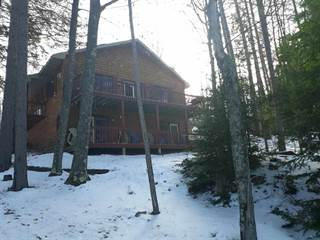 Single Family for sale in 176 Stanley Lake Homestead, Iron River, MI, 49935