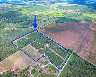 Farm And Agriculture for sale in 354 County Road 321, George West, TX, 78022