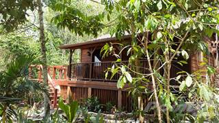 Residential Property for rent in #7026 - Tree Tops Vacation Home, Benque, Cayo