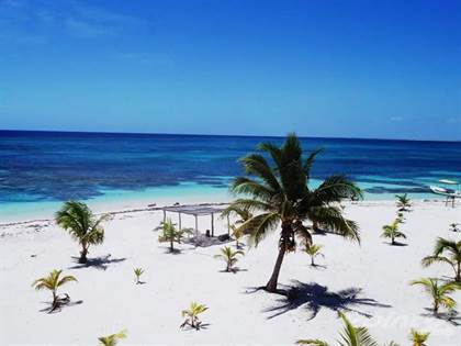 Farm And Agriculture for sale in AMAZING LOT FOR SALE IN MAHAHUAL, SIAN KA'AN RESERVE, Majahual, Quintana Roo