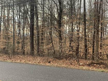 Lots And Land for sale in 0 REED CREEK DR, Bassett, VA, 24055