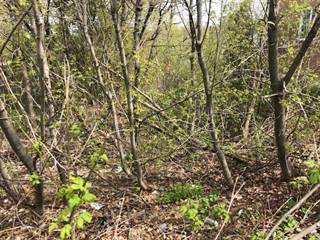 Land for sale in 90 Willis Rd, Vaughan, Ontario, L4L2S2