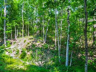Land for sale in Tbd Maureen Avenue, Randolph, ME, 04346
