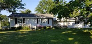 Single Family for sale in 59604 Starview Estates, New London, MO, 63459