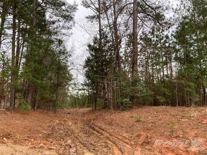 Lot/Land for sale in 0 Castleberry Road , Clayton, NC, 27527