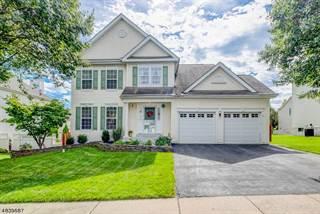 Single Family for sale in 369 STONEHENGE DR, Greater Phillipsburg, NJ, 08865