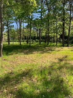 Residential Property for rent in No address available, Hampton Bays, NY, 11946