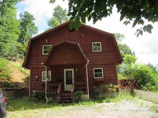 Residential Property for sale in 798 Big Ridge Road, Bakersville, NC, 28705