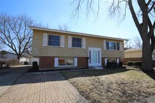 Single Family for sale in 325 Jackson Street, Park Forest, IL, 60466