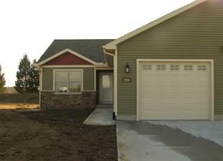 Condo for sale in 784 Meadows, Grass Lake, MI, 49240