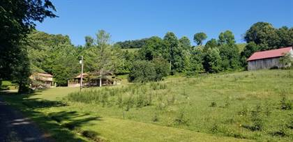 Residential Property for sale in 932 Castene Rd, Ewing, VA, 24248