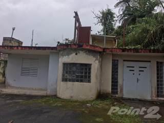 Residential Property for sale in BARRIO CEDRO ABAJO- NARANJITO, Naranjito, PR, 00719