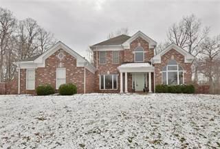 Single Family for sale in 439 South Morgan Street, Warrenton, MO, 63383