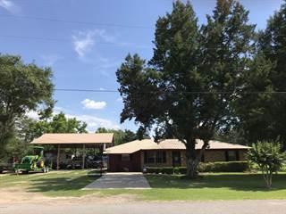 Single Family for sale in 2571 MCKINNON Street, Cottondale, FL, 32431