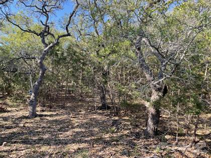 Lots And Land for sale in 711 Vista Springs, Spring Branch, TX, 78070