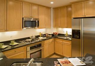 Bedroom Apartments For Rent In Washington Point Homes - 3 bedroom apartments washington dc