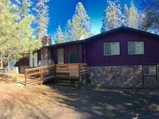 Single Family for sale in 41 Olsen Creek Rd, Hyampom, CA, 96046