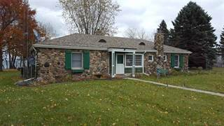 Single Family for sale in 5848 Lakeshore, Greater Forester, MI, 48465