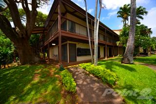 Sensational Houses Apartments For Rent In Maui County Hi From 140 Home Interior And Landscaping Ologienasavecom