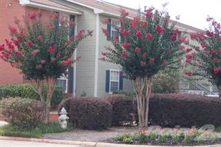 Apartment for rent in Northtown Apartments - 1 BR/ 1 BA WD, Jackson, MS, 39211