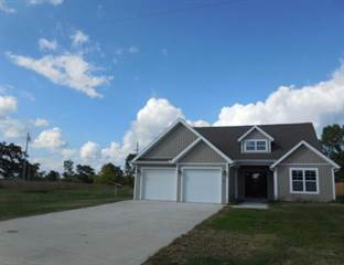 Single Family for sale in 107 Blackhawk  RD, Anderson, MO, 64831