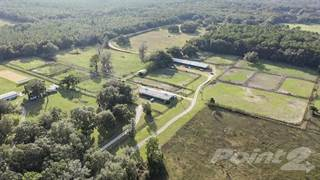 Farm And Agriculture for sale in 1090 SW 110th Ave, Ocala, FL, 34481