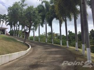Residential for sale in Carretera 962, Canovanas Municipality, PR, 00745