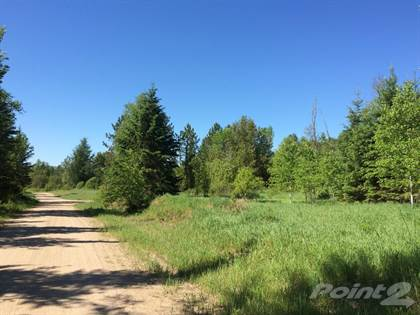 Lots And Land for sale in Copeland-Evans chemin, Alleyn-et-Cawood, Quebec