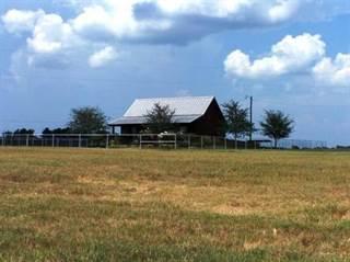 Single Family for sale in 510 County Road 4251, De Kalb, TX, 75559