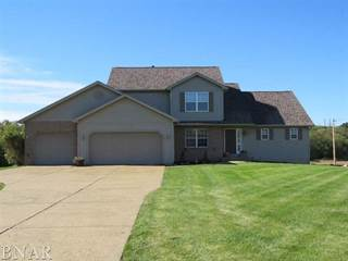 Single Family for sale in 9620 Wolf Hill, Gillum, IL, 61705