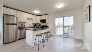 Apartment for rent in 873 32nd Street - 2A, Oakland, CA, 94608