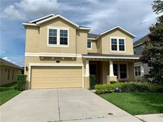 Single Family for sale in 19231 EARLY VIOLET DRIVE, Tampa, FL, 33647