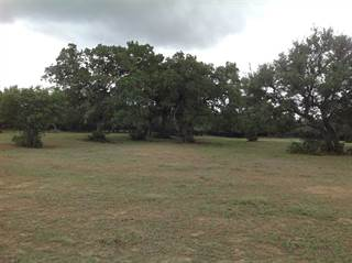 Farm And Agriculture for sale in 23601 Old Ferry, Spicewood, TX, 78669