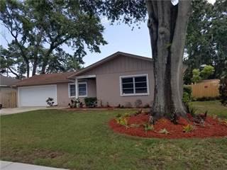 Single Family for sale in 1463 OTTEN STREET, Clearwater, FL, 33755