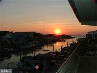 Apartment for rent in 1708 DELAWARE AVENUE 8, North Wildwood, NJ, 08260