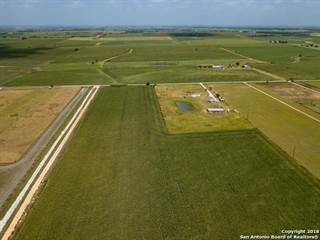 Farm And Agriculture for sale in NE Werchan LN, Elgin, TX, 78621