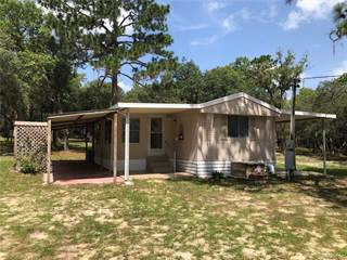 Residential Property for sale in 2170 N Leebo Point, Inverness, FL, 34453